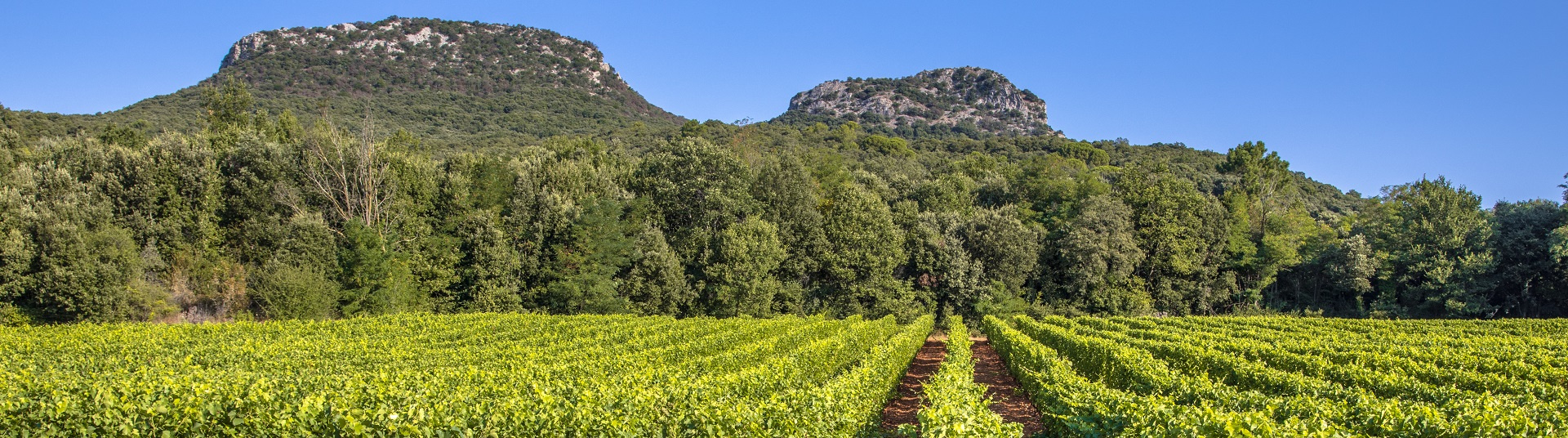 Week-end pas cher Languedoc-Roussillon